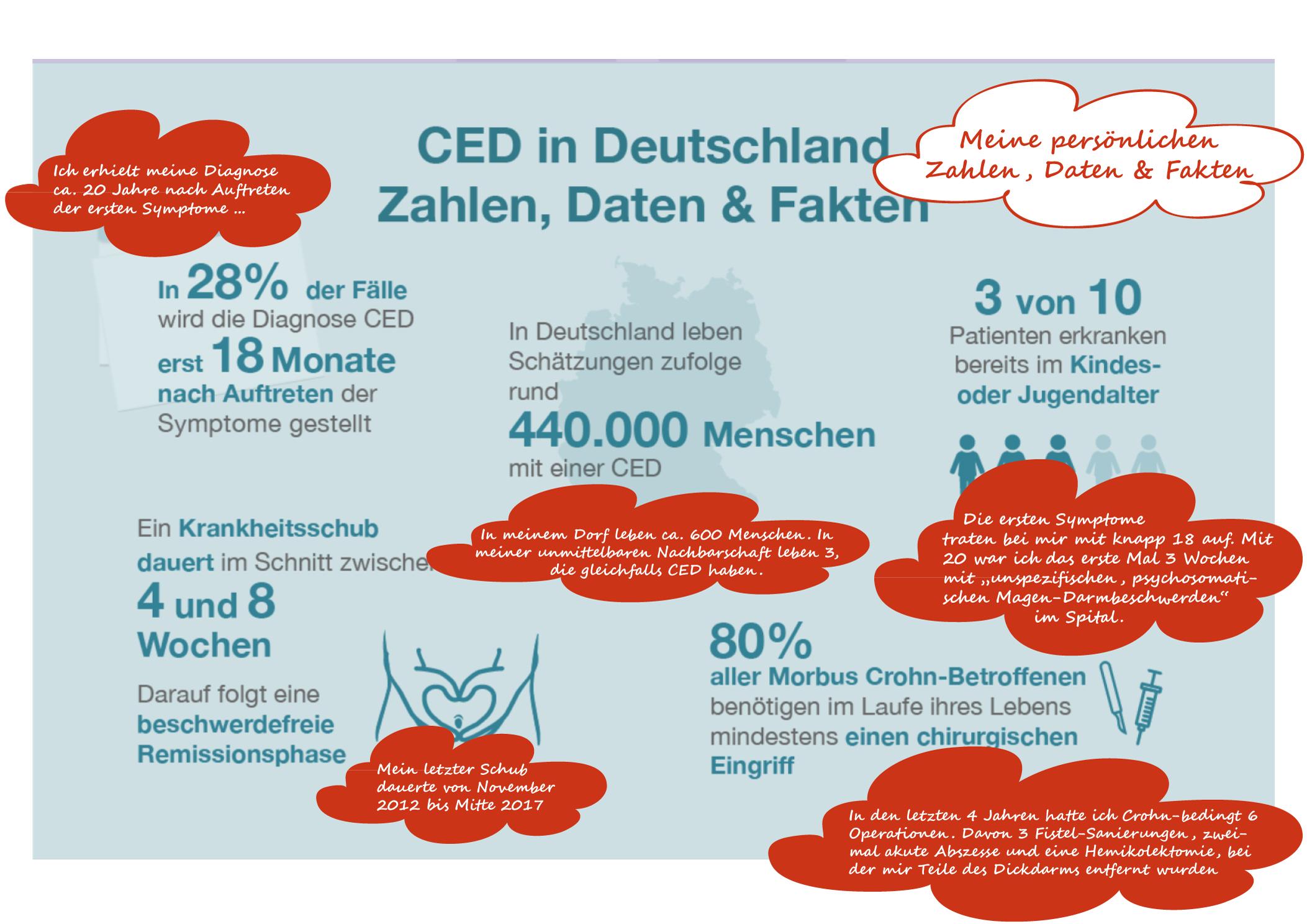 InfografikCED meineDaten - Neue Lieb-Links und Infos rund um CED